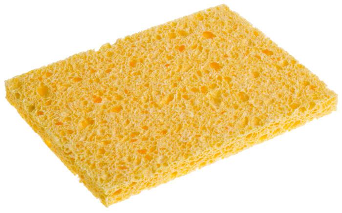 Antex sponge