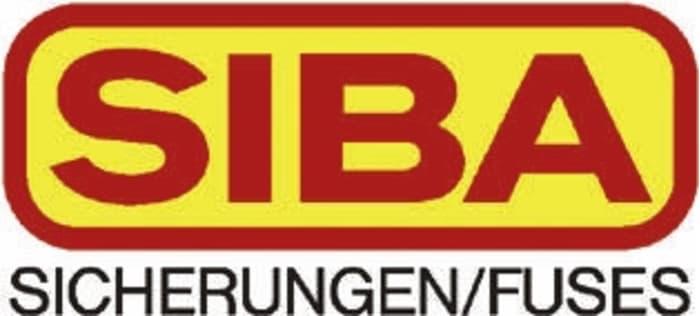 0.63 A 1 x FUSIBLE 70-007-33//0.63A de acción rápida de Siba CARTUCHO