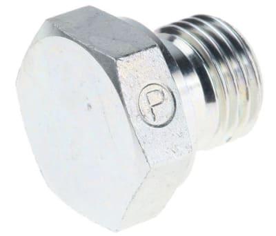 Hydraulic Blanking Plugs