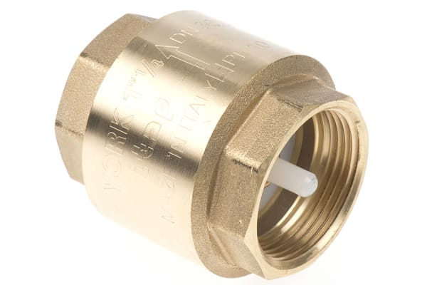 Product image for Spring loaded non return valve 1 1/4in