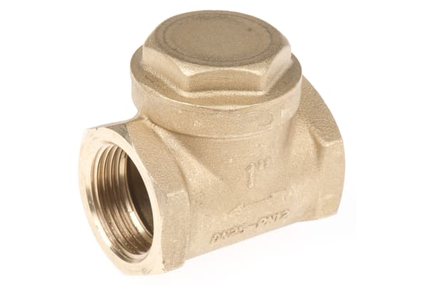 Product image for Brass swing check valve,1in BSP F