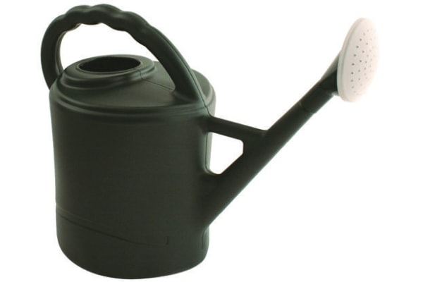 Product image for 10 Litre Plastic Watering Can c/w Rose