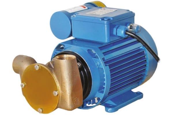 Product image for IMPELLER UTILITY PUMP,18 LPM, 230 V