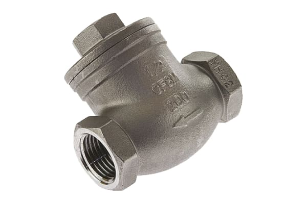 Product image for S/steel swing check valve,2in BSP F
