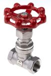 Product image for S/steel AISI globe valve,1/2in BSP F-F