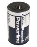Product image for PANASONIC ALKALINE D 24BX