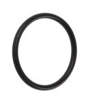 Product image for O Rings M 20 x 1.5mm