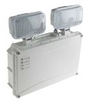 Product image for LED Twin-spot 2x3W  non-maintained