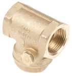 Product image for Brass swing check valve,3/4in BSP F