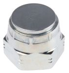 Product image for 1/2in BSPP ZnPt steel blanking cap