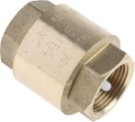 Product image for Spring loaded non return valve,3/4in BSP