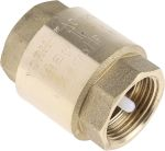 Product image for Spring loaded non return valve,1in BSP