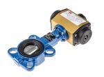 Product image for 2in. Wafer Pattern Butterfly Valve