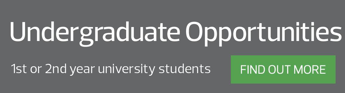 Undergraduate Opportunities at RSM