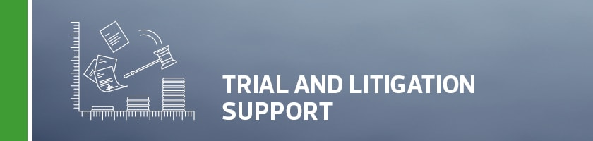 Trial and Litigation Support