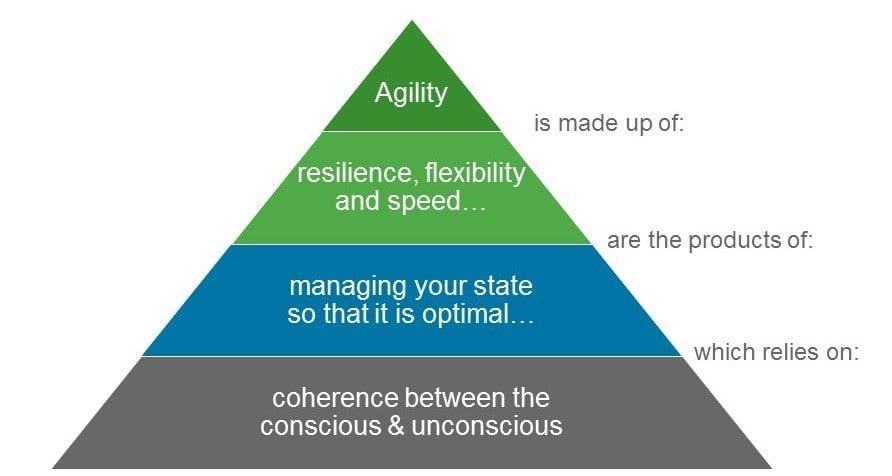 fig_1_-_the_agility_pyramid.jpg