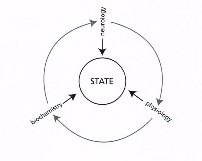 fig_2_-_state_circle.jpg