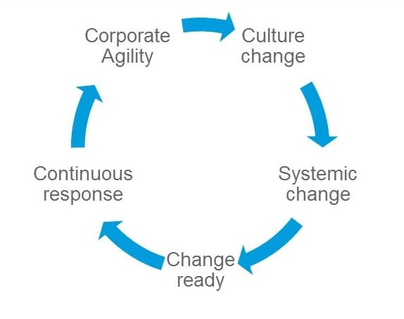 fig_3_-_corporate_agility_cycle.jpg