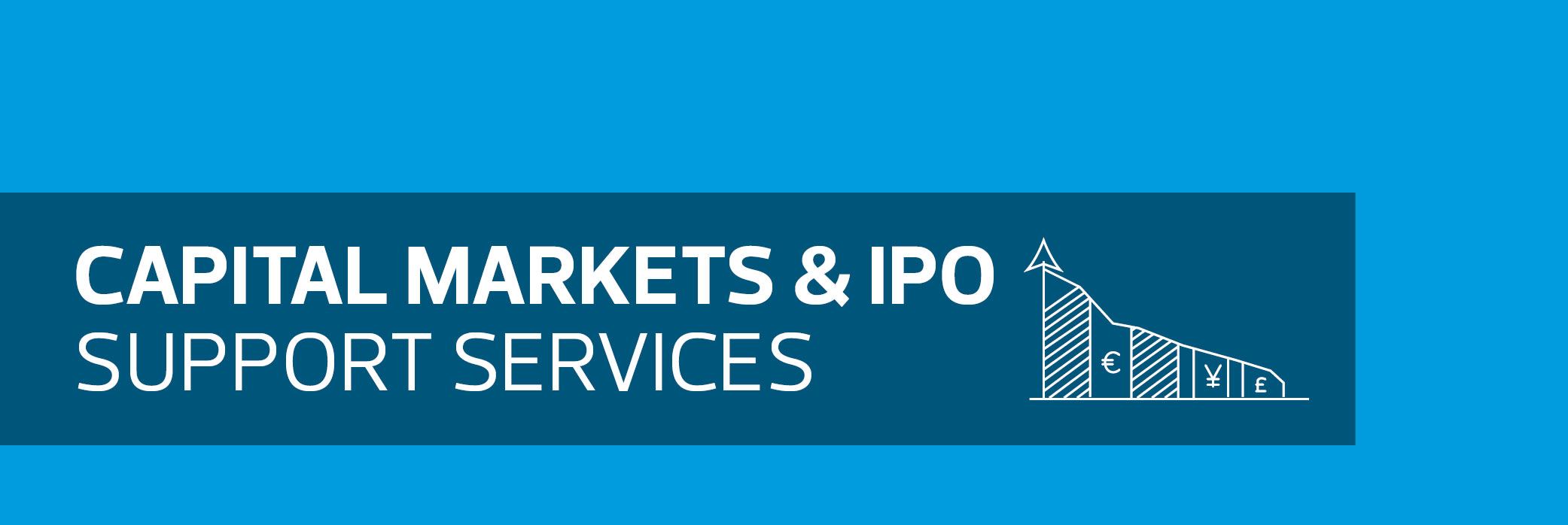 Capital Markets and IPO support services