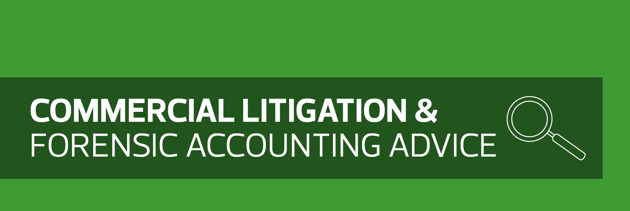 Commercial litigation & forensic accounting advice