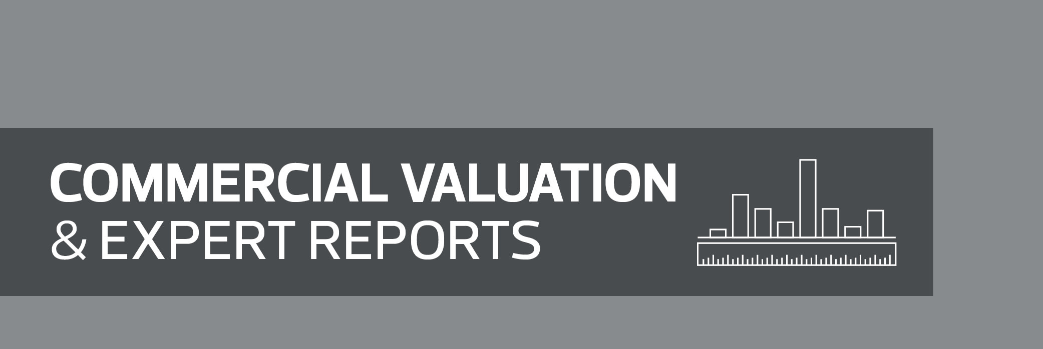 Commercial valuation and expert reports