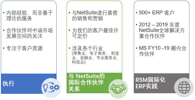 netsuite_2020_translated.png