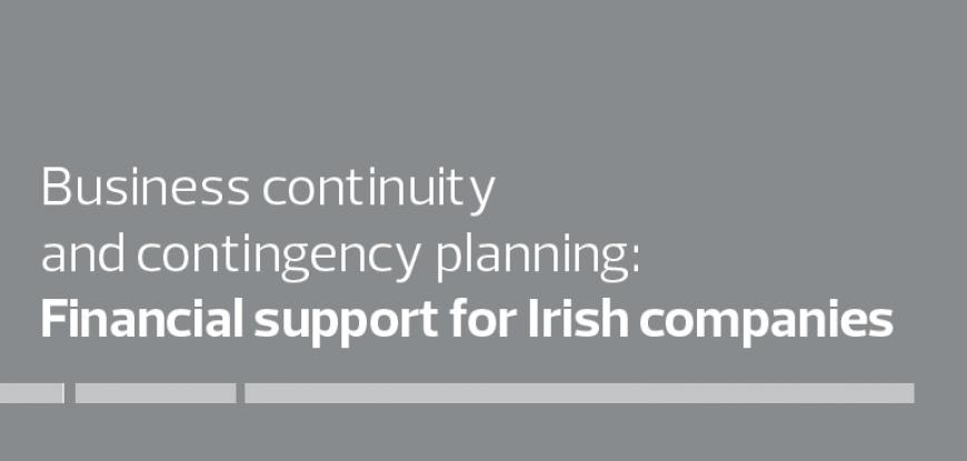 Covid-19 business continuity: financial support for Irish companies