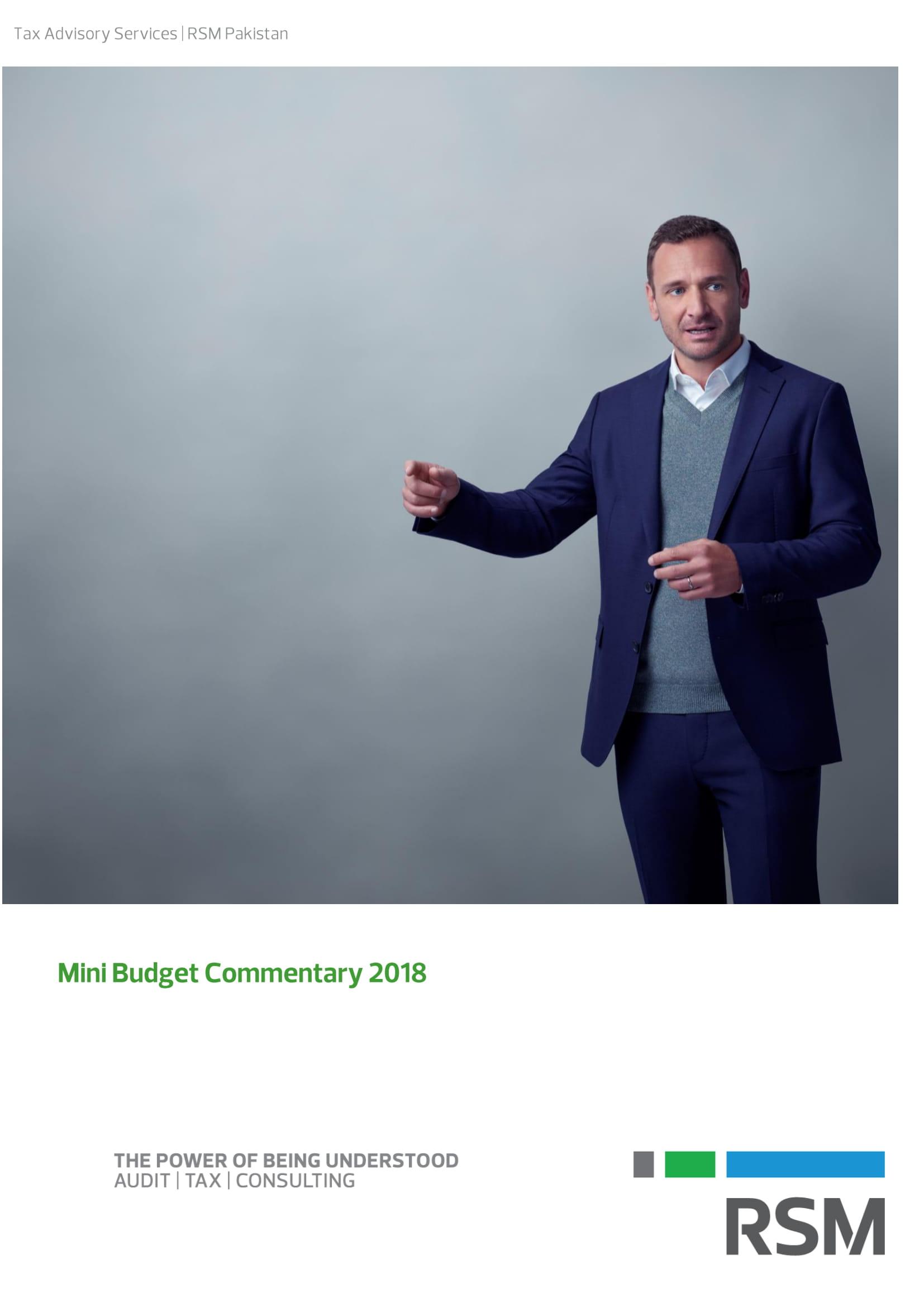 mini_budget_2019-_title_page-1.jpg