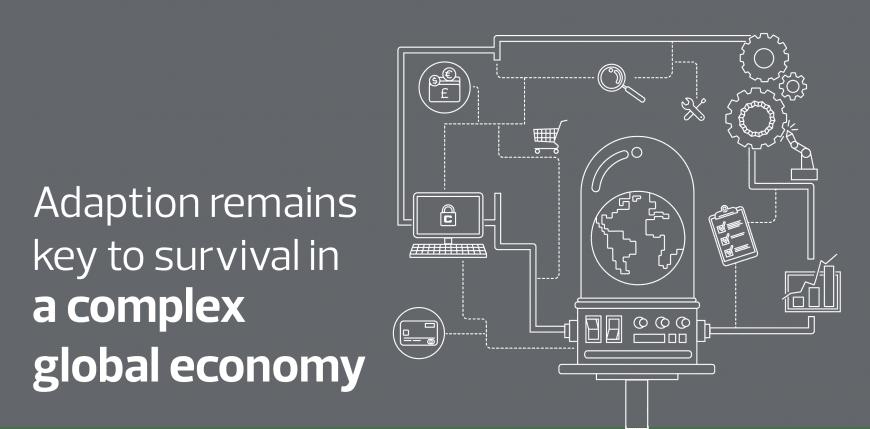 Complex global economy