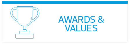 RSM Awards and Values