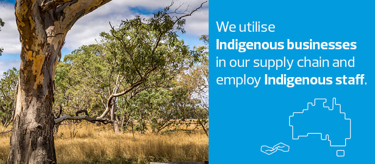 Supporting indigenous businesses