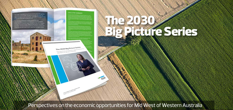 Perspectives on the economic opportunities for the Mid West of Western Australia