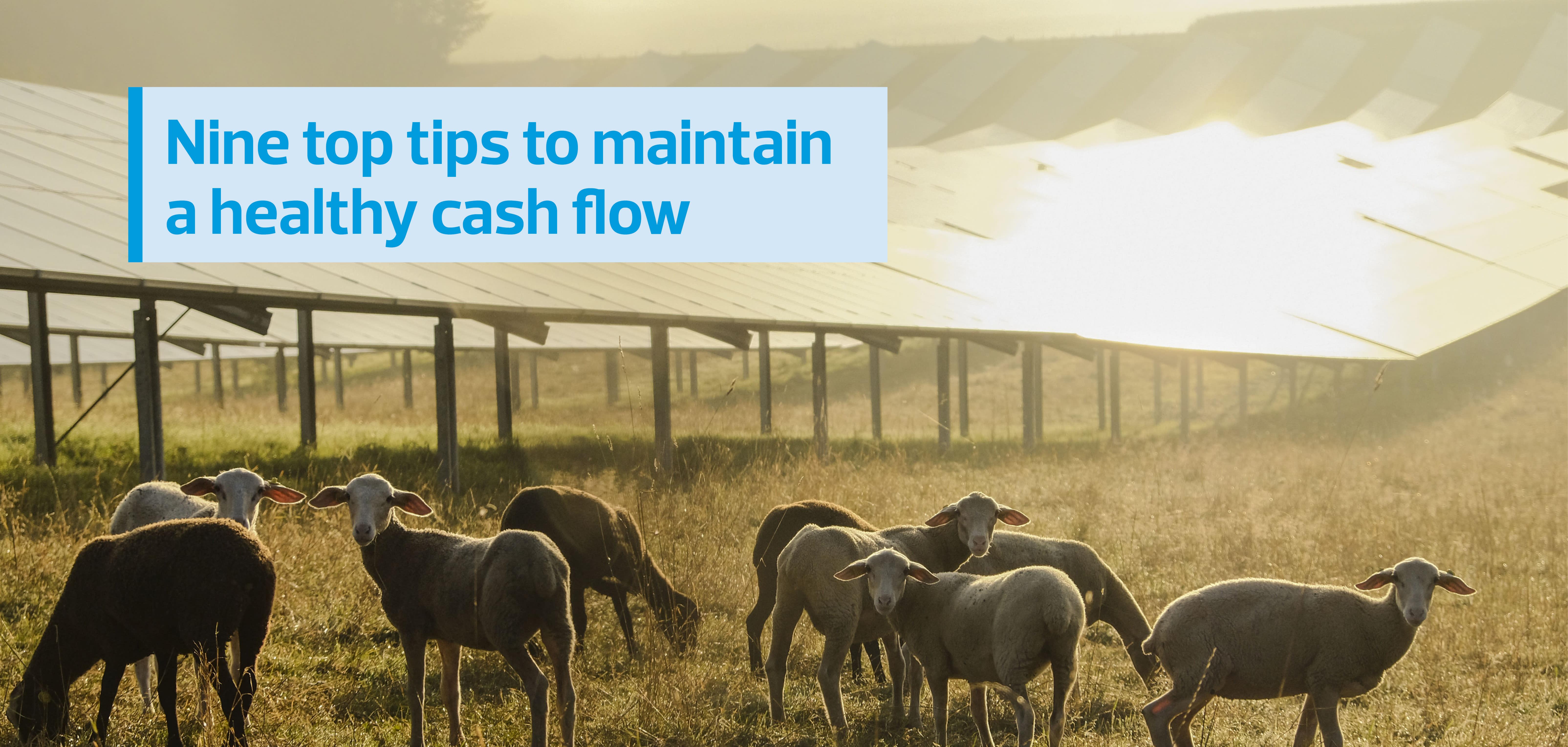 public://media/2020-08-27_nine_top_tips_to_maintain_a_healthy_cash_flow_thumbnail.jpg