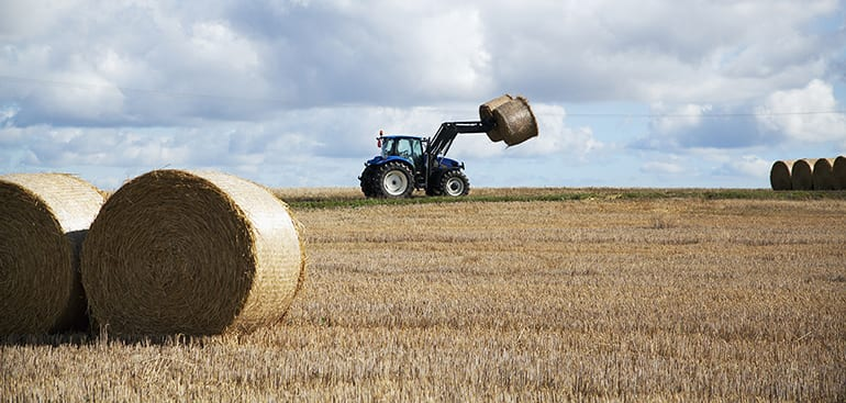 public://media/Article Thumbnail Images/Article Stock Images/Industry - Agriculture/agriculture_129913_low_res_webimage_webimage.jpg