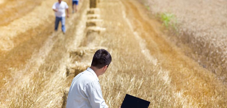 public://media/Article Thumbnail Images/Article Stock Images/Industry - Agriculture/farm_business6.jpg