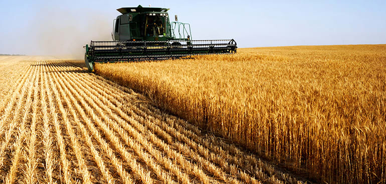 public://media/Article Thumbnail Images/Article Stock Images/Industry - Agriculture/farming_2.jpg