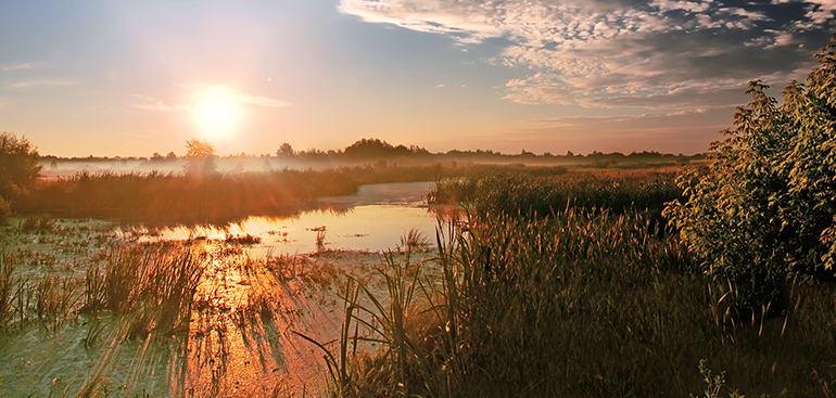 public://media/Article Thumbnail Images/Article Stock Images/Landscapes/sunset_-_landscape_2.jpg