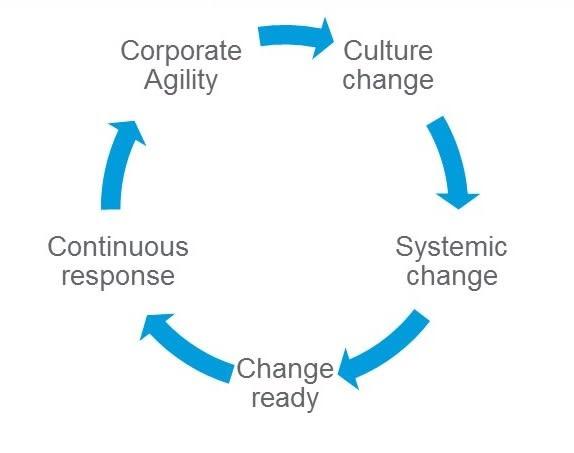fig_3_-_corporate_agility_cycle.jpg