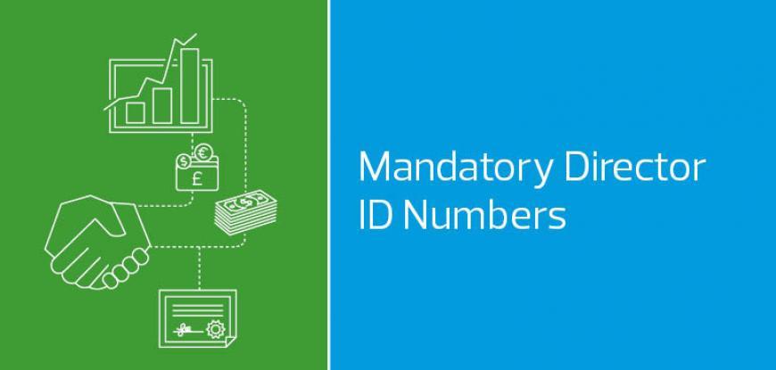 Mandatory Director ID Numbers