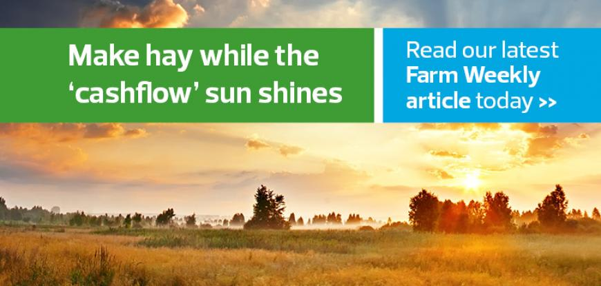 Make hay while the 'cashflow' sun shines