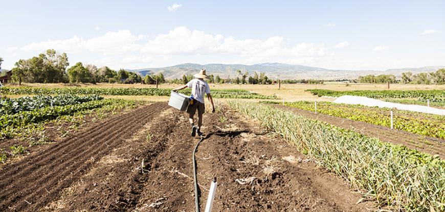Proposed Amendments to Farm Management Deposit Scheme