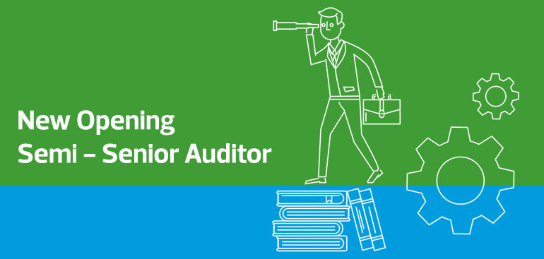 Semi-Senior-Auditor