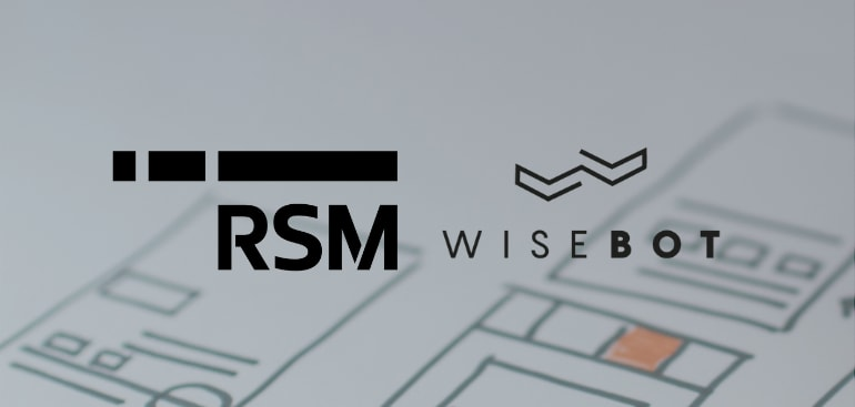 public://media/Conseil/RSM-Wisebot/rsm-wisebot-rpa.png
