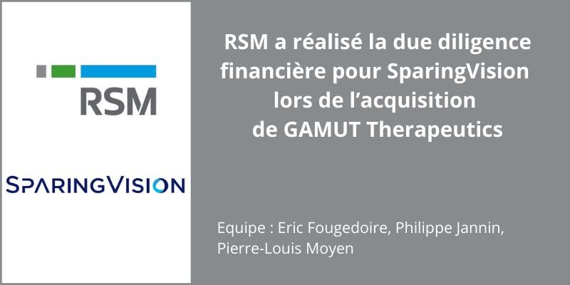 public://media/Corporate Finance/deal-rsm_sparingvision-gamut-1.png