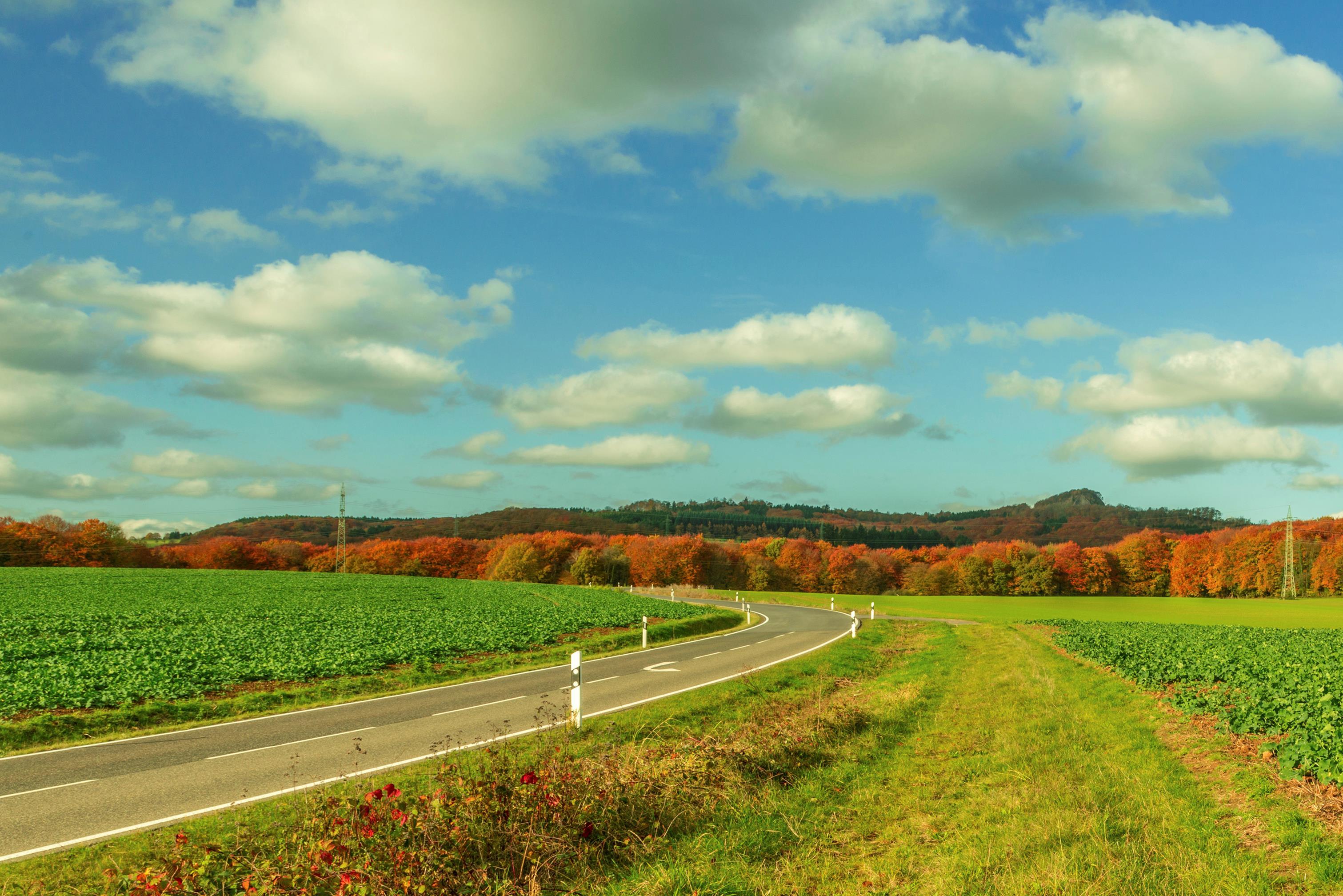 public://media/news/13._road_through_the_farm.jpg