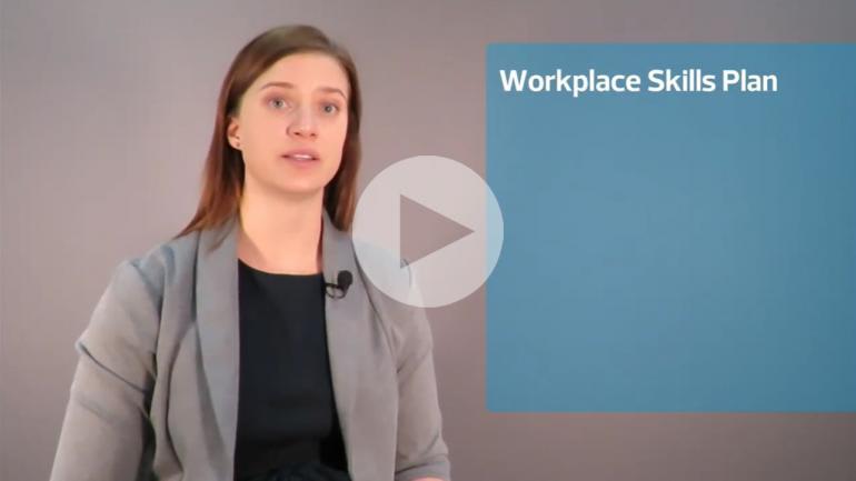 Workplace skills  plan