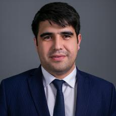 "Director ""RSM Outsource Tajikistan"""