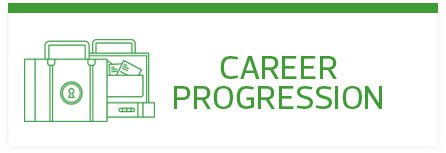 RSM Career Progression