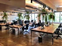 Desks for rent 145 William Street Darlinghurst, NSW