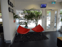 Private Office for rent 246 Pacific Highway Crows Nest, NSW
